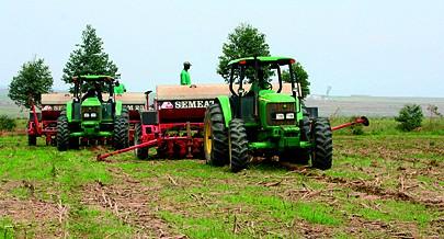 """Programa """"Tele-Alimento"""" vai permitir aos agricultores produzirem determinadas culturas fora do ciclo habitual"""