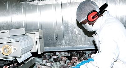 A fábrica tem equipamentos que permitem a limpeza e o corte de peixe em filetes e postas