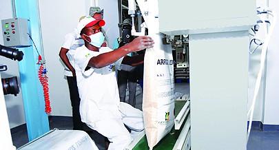 Moxico mobiliza a classe empresarial para a aposta na produção de arroz em grande escala com foco na auto-suficiência alimentar