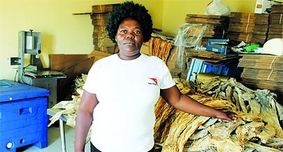 Laura Marques é um das peixeiras que com o crédito recebido através do projecto Mulheres Empreendedoras alargou o seu negócio e os conhecimentos sobre como gerir  um empreendimento