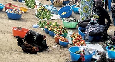 O rápido escoamento dos produtos do campo para a cidade permitiu a redução de preços