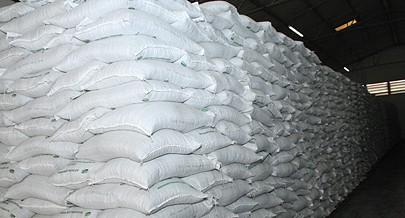 Gestores do Entreposto Aduaneiro assumem ambição de ser um  parceiro de peso no fomento da produção agrícola