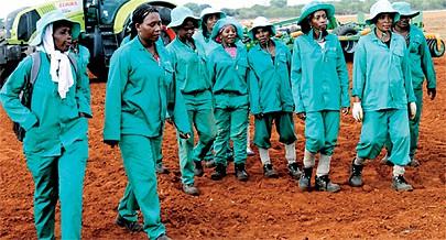 O número de postos de trabalho criados é um contributo valioso para o programa de combate à fome e à pobreza no meio rural