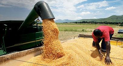 Pólo agro-industrial no Uaku Cungo da sociedade Aldeia Nova aposta na produção de milho e soja para cobrir uma parte da procura nacional de fertilizantes