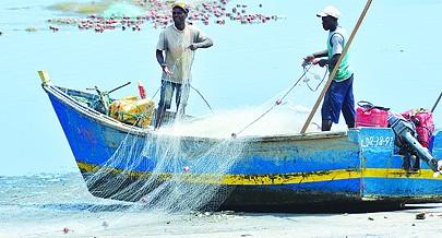 Apoios institucionais ao sector privado são essencialmente  canalizados através de  associações e cooperativas de pescadores
