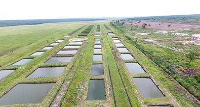 A cooperativa  já foi sondada para disponibilizar parte dos seus tanques para aulas práticas e pesquisas de piscicultura na região