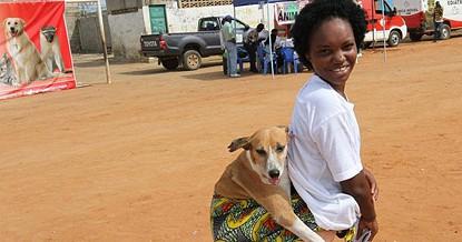 As  pessoas que têm animais como cães e gatos devem levá-los aos postos de vacinação fixos na Direcção Provincial da Agricultura