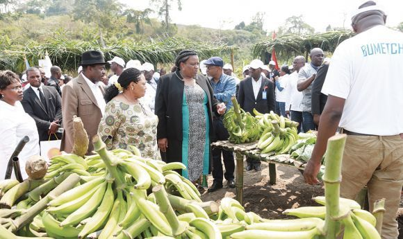 Incentivos do Estado resultam  em aumento da produção agrícola