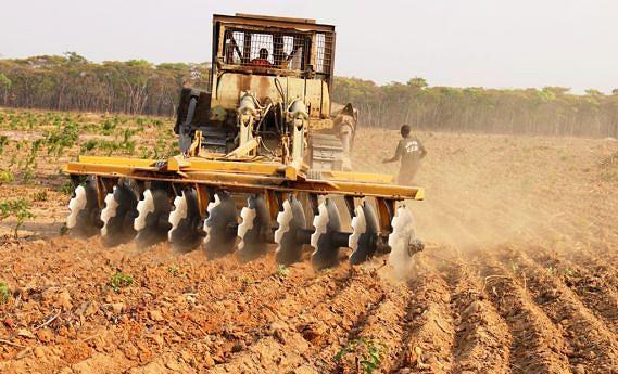 Criação de solos mais aráveis tem sido um dos desafios dos produtores locais