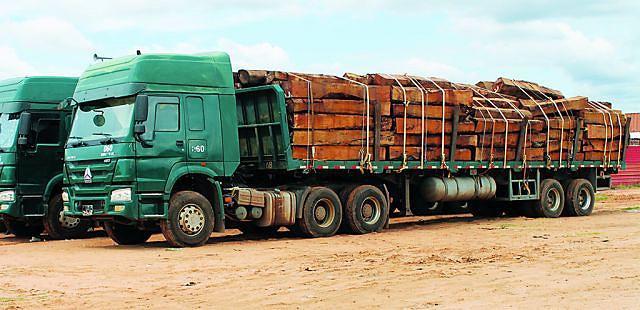 Diariamente  dezenas de camiões carregados com madeira vão para outras paragens