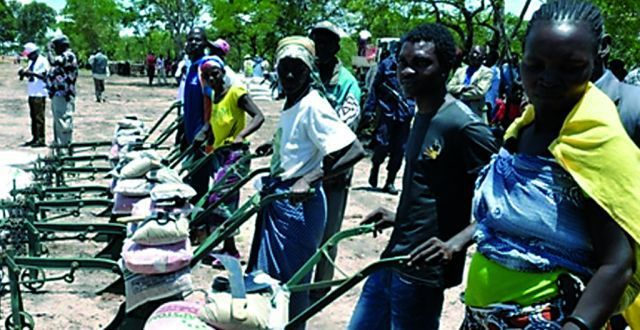 Camponeses beneficiam  de apoios  para dinamizar a produção  de hortícolas