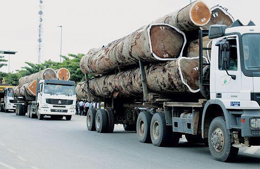 O Ministério da Agricultura trabalha na fiscalização do preço mínimo para melhorar o controlo da movimentação da madeira