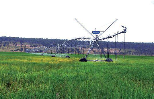 O trabalho tem sido fundamentalmente na recuperação de equipamentos agrícolas e sobretudo dos pivôs de rega e a abertura de valas de drenagem tendo em conta que a área de cultivo regista inundações no tempo chuvoso
