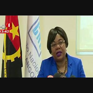 CNE aprova regulamento de contagem de votos nas províncias