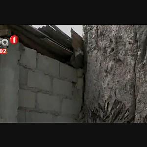 Imbondeiro coloca em risco residências no Rocha Pinto
