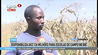 FAO, disponibiliza akz 126 milho?es para escolas de campo no Bie?