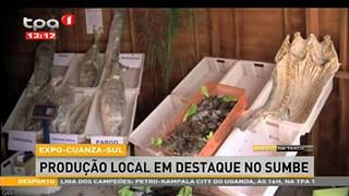 """Produção local em destaque no Sumbe """"Expo-Cuanza-Sul"""""""