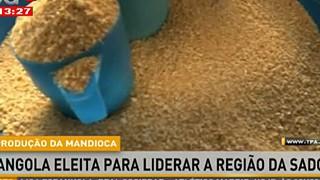 Angola eleita para liderar a Regia?o da SADC na produc?a?o de Mandioca