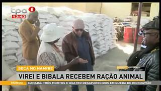 Seca no Namibe - Virei e Bibala recebem racção animal