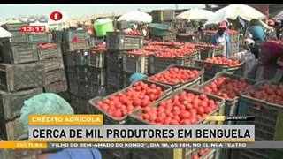 Cre?dito Agri?cola - Cerca de mil produtores em Benguela