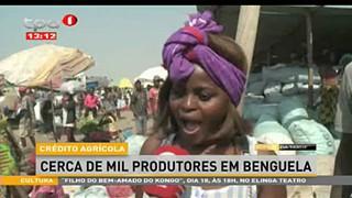 Cre?dito Agri?cola cerca de mil produtores em Benguela