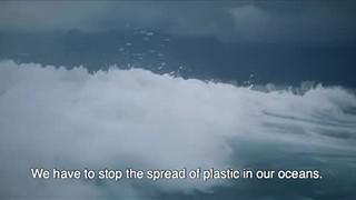 Oceanário e aquários Vasco da Gama e de Porto Pim contra o lixo marinho