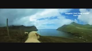 As Ilhas Faróe pelos olhos de uma ovelha