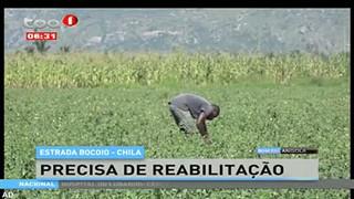 Estrada Bocoio - Chila, precisa de reabilitac?a?o