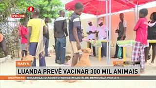 Raiva - Luanda Preve? vacinar 300 mil animais