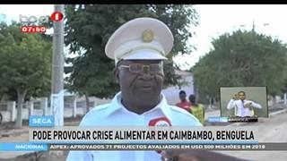 Seca pode provocar crise alimentar em Caimbambo, Benguela