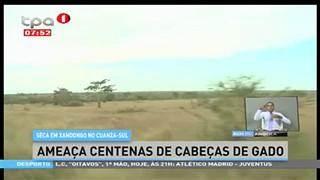 Seca em Xandongo no Cuanza-Sul ameac?a centenas de cabec?as de gado