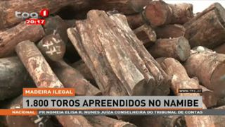 Madeira Ilegal - 1.800 Toros apreendidos no Namibe