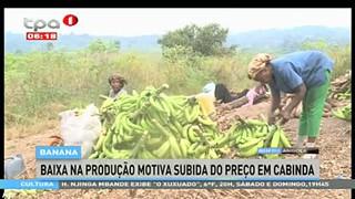 Banana - Baixa na produc?a?o motiva subida do prec?o em Cabinda