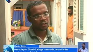 Associação Simabô atinge marca de dez mil cães castrados em São Vicente