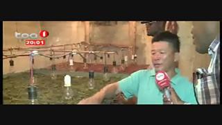 Vietnamitas suspeitos de exportação ilegal de alpgas e lulas, Namibe