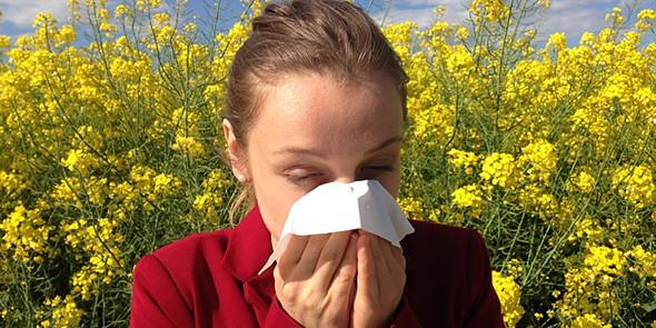 tek alergias