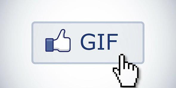 tek facebook gif