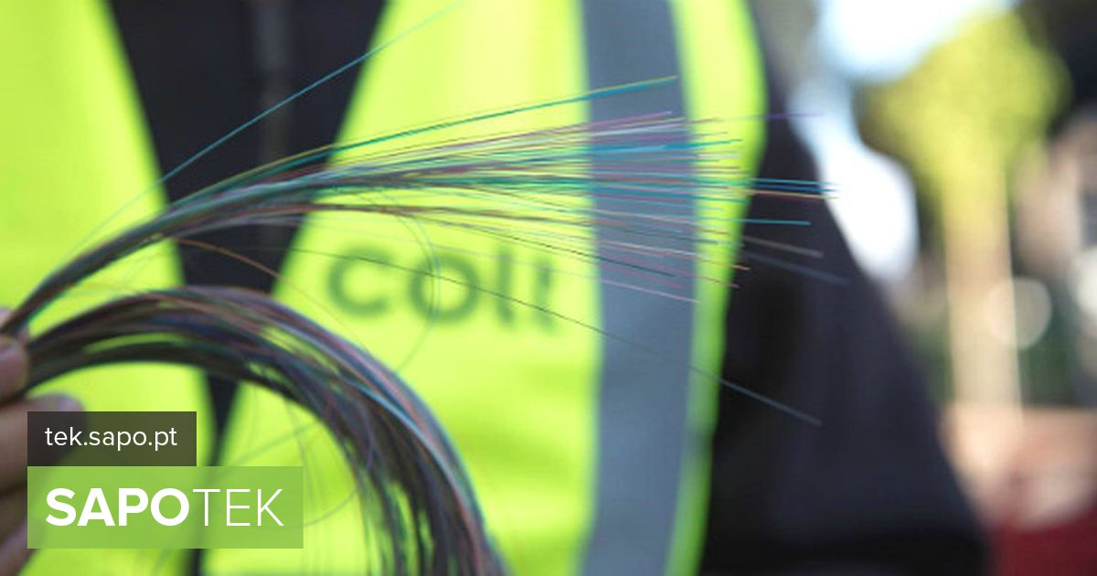 Colt Portugal closes 2019 with double digit growth and 830 km of fiber ...