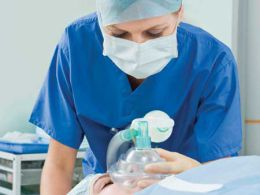 Investigador dá os primeiros passos no transplante de fígado
