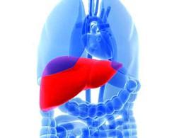 Cancro do fígado