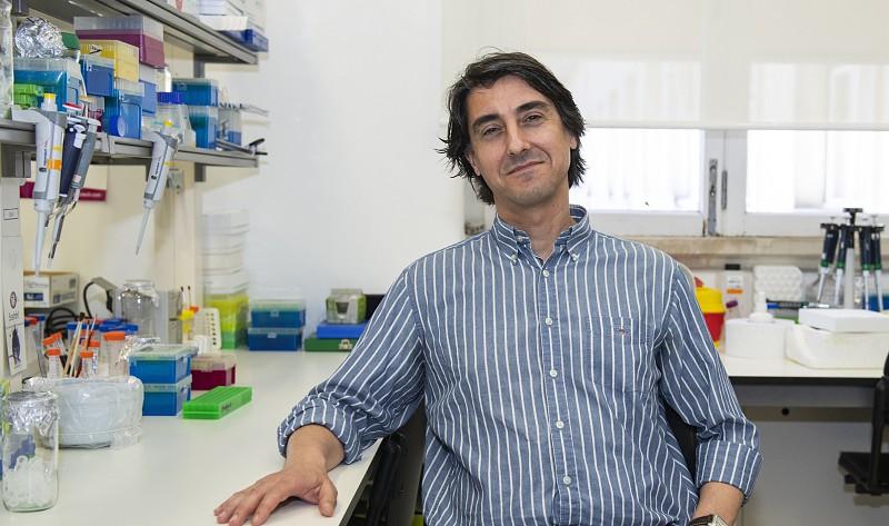 Nanopartícula para combate ao cancro desenvolvida na Universidade de Coimbra obtém designação de