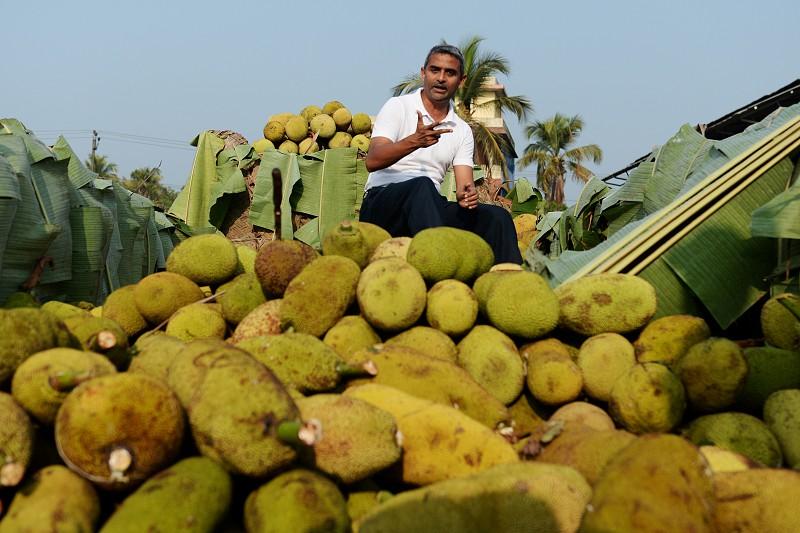 Jaca. A fruta originária da Índia que está a conquistar o mundo como alternativa à carne