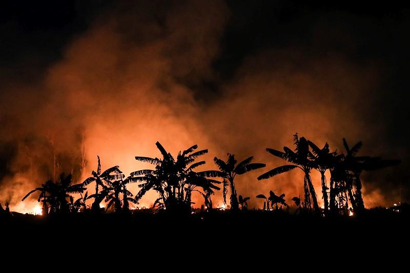 Brasil. Desflorestamento na Amazónia bate recorde em abril