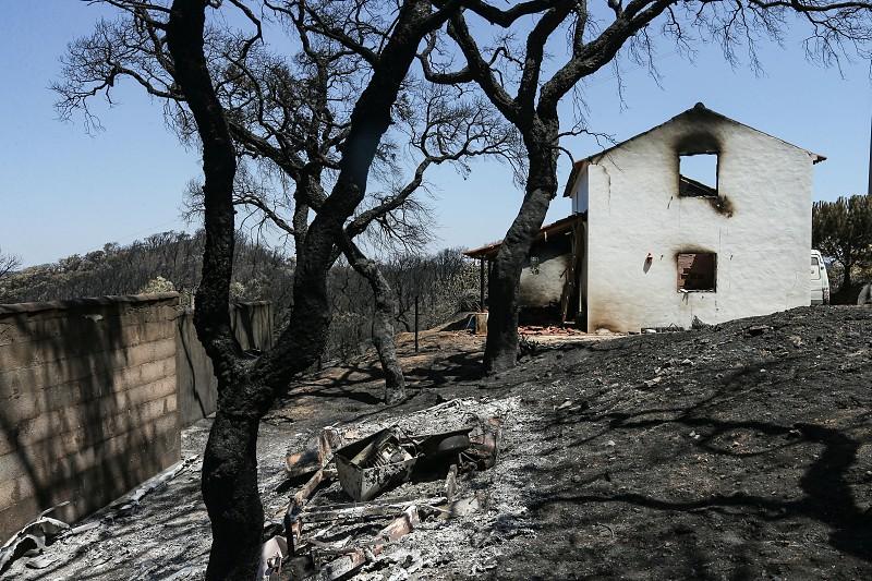 Segurança Social disponibiliza linhas de apoio às populações afetadas pelos incêndios