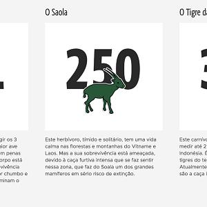 0dc7177d953c5 O famoso crocodilo da Lacoste deu lugar a dez outras espécies. Tudo ...