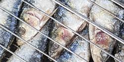 Carapau ou sardinha? Qual o mais saudável?