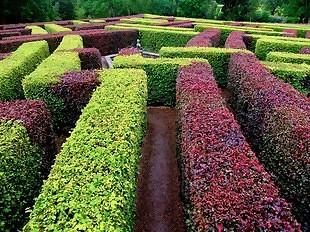 sebes perfeitas decoração e jardins sapo lifestyle