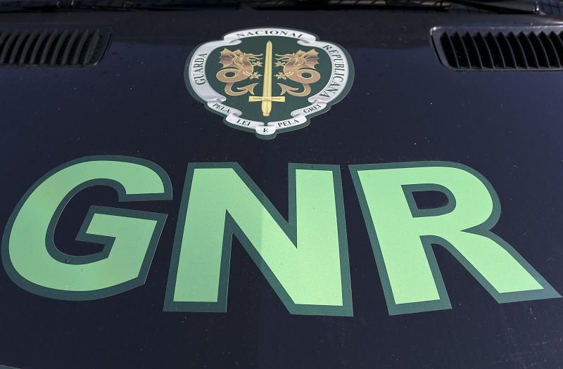 Resultado de imagem para Núcleo de Proteção Ambiental gnr