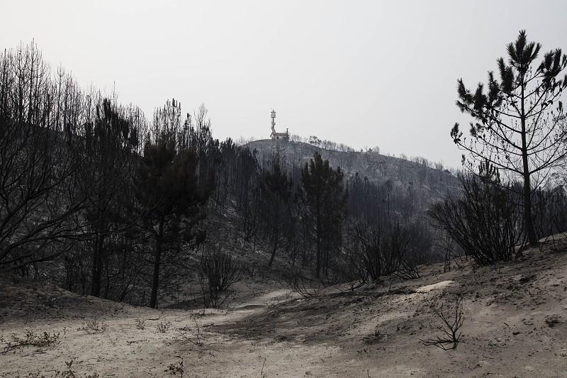Análise aos fogos em Portugal