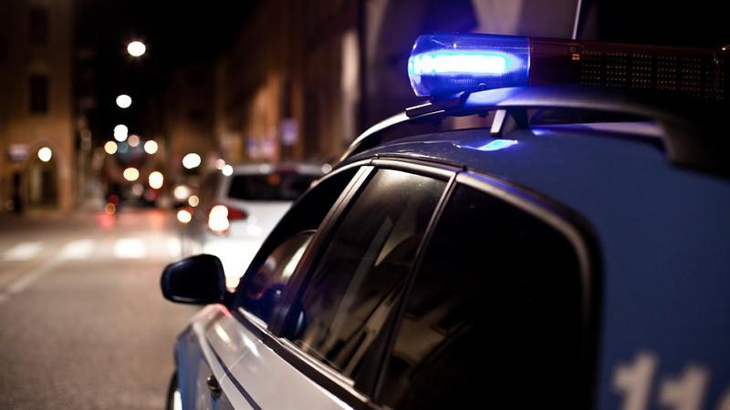 Polícias desmantelam grupo que roubava mapas em bibliotecas pela Europa